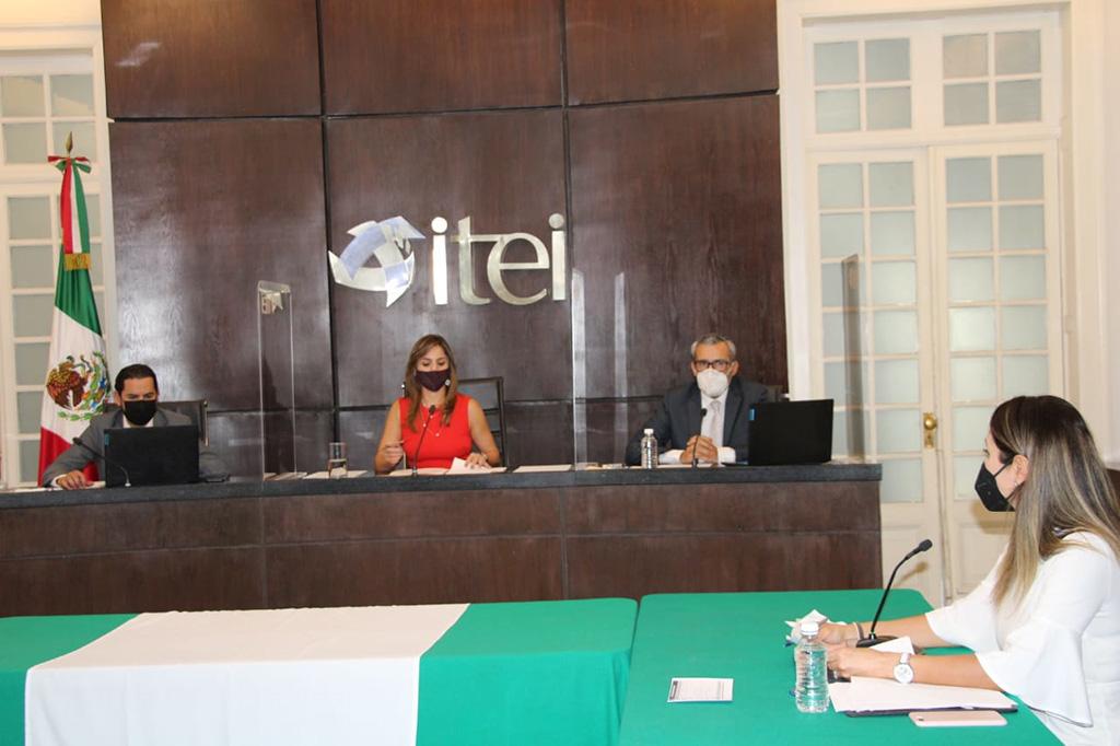 Pleno del ITEI trabajará con el Gobierno del Estado para crear portales web accesibles para personas con alguna discapacidad